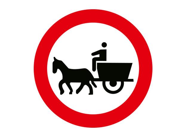 At Arabası Giremez TT-13